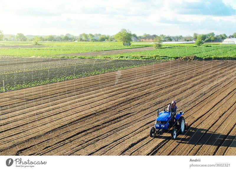 Landwirt auf einem Traktor bearbeitet ein Feld. Er zerkleinert und lockert den Boden, entfernt Pflanzen und Wurzeln aus der vergangenen Ernte. Feldvorbereitung für die Neuanpflanzung von Feldfrüchten. Kultivierungsausrüstung. Ländlicher Raum
