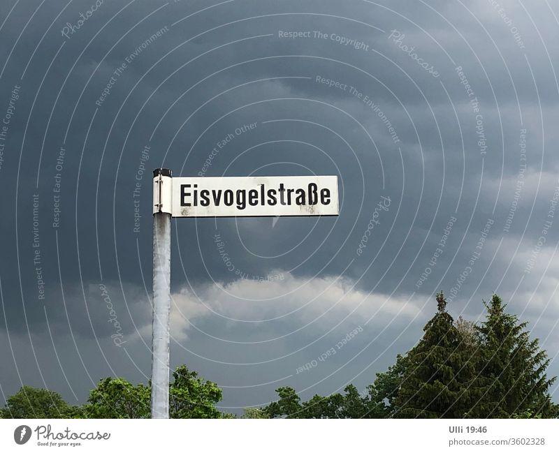 Unwetterwarnung? Regen? Straßennamenschild Wolkenwand Wetterumschwung Vorfreude Bäume Einsam Einsamer Weg menschenleer Bedrohung erwartungsvoll düster Eisvogel