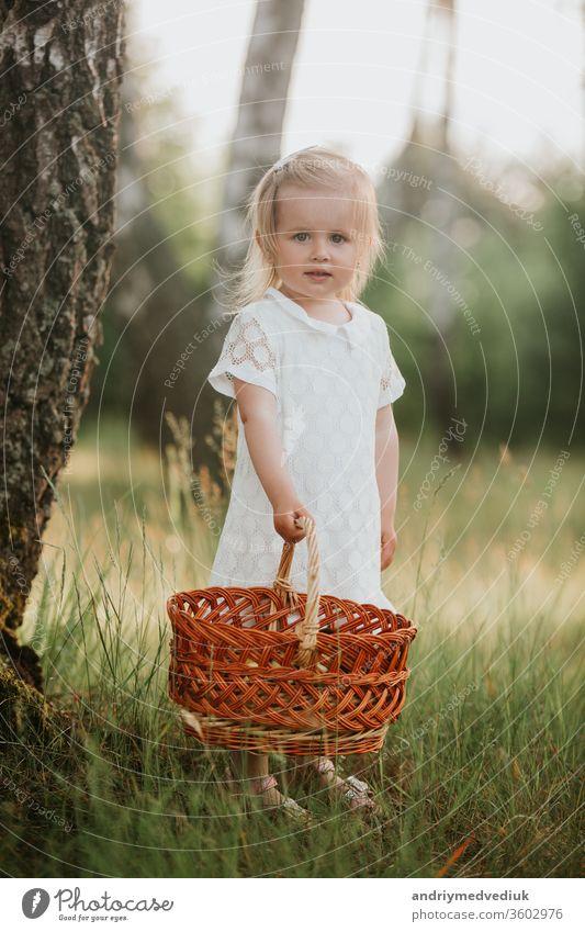 Hübsches kleines Mädchen, das mit einem Korb in einem sonnigen Garten spazieren geht. kleines Mädchen in einem weißen Kleid mit einem Korb im Park Frühling