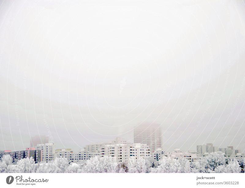 Weißer Himmel, weiße Häuser, weiße Bäume Winter Schnee Marienfelde Stadtrand Wohnhochhaus kalt Stimmung High Key Dämmerung Ferne Frost Umwelt Baum Landschaft