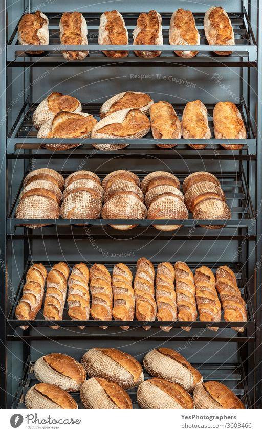 Brotsorte im Metallregal einer Bäckerei Sortiment Baguette Backwaren Bäckerei-Interieur Brotgestelle Business Konsumverhalten Kruste Vielfalt Lebensmittel