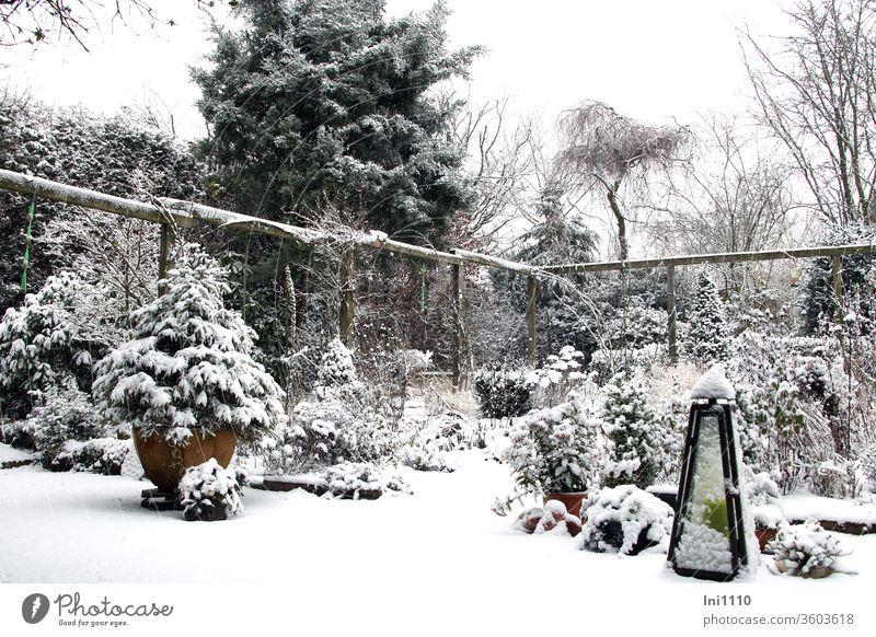 Zauber im Garten es hat geschneit Winter Schneee schneien Hausgarten Schneehäubchen Pergola Koniferen Stuaden Kerzenständer unberührt winterlich Jahreszeit
