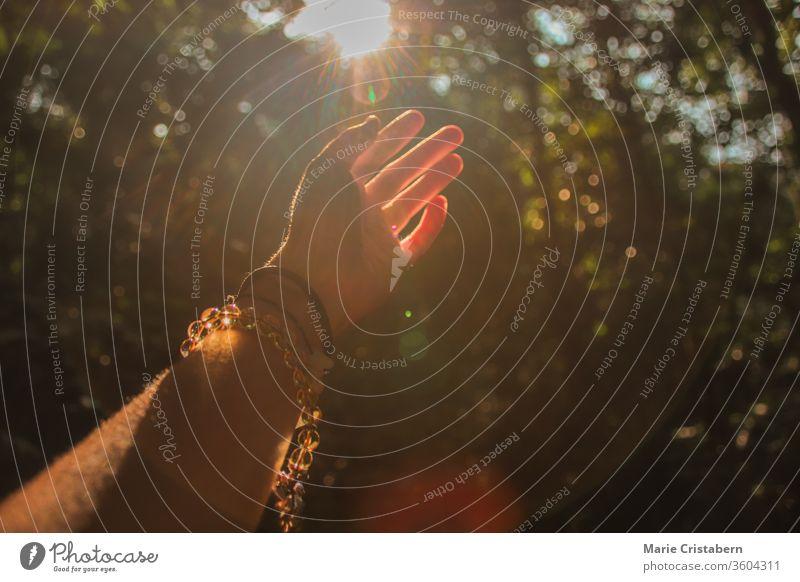 Die Hände strecken sich nach dem Licht aus, das aus dem Wald kommt, um das Konzept der Unterstützung der psychischen Gesundheit, der Heilung in der Natur und der Fitness während der Covid-19-Pandemie zu zeigen