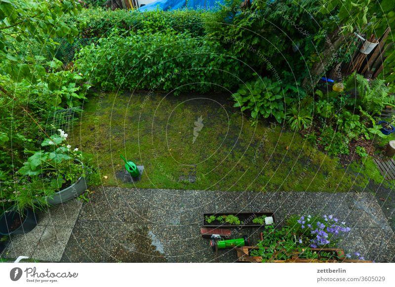 Garten aus der Vogelperspektive ast baum blühen blüte erholung ernte ferien frucht garten gras kirschbaum kleingarten kleingartenkolonie menschenleer natur