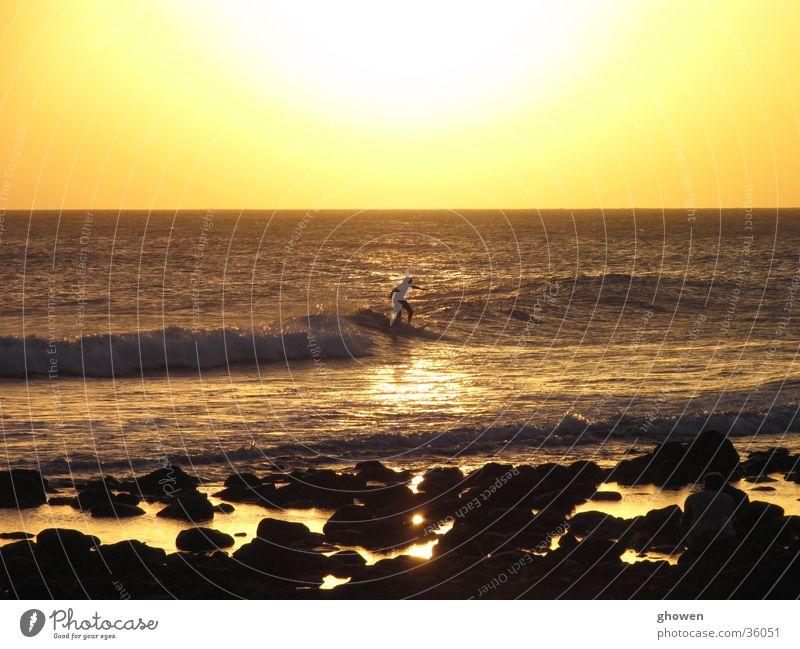 Sunset Surfing Meer Strand Surfen