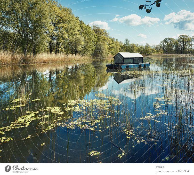 Es trödelt Hausboot Spiegelsee Wasseroberfläche Wasserfahrzeug Ruhe Idylle Weite See Reflexion & Spiegelung Außenaufnahme draußen Natur Himmel Wolken ruhig