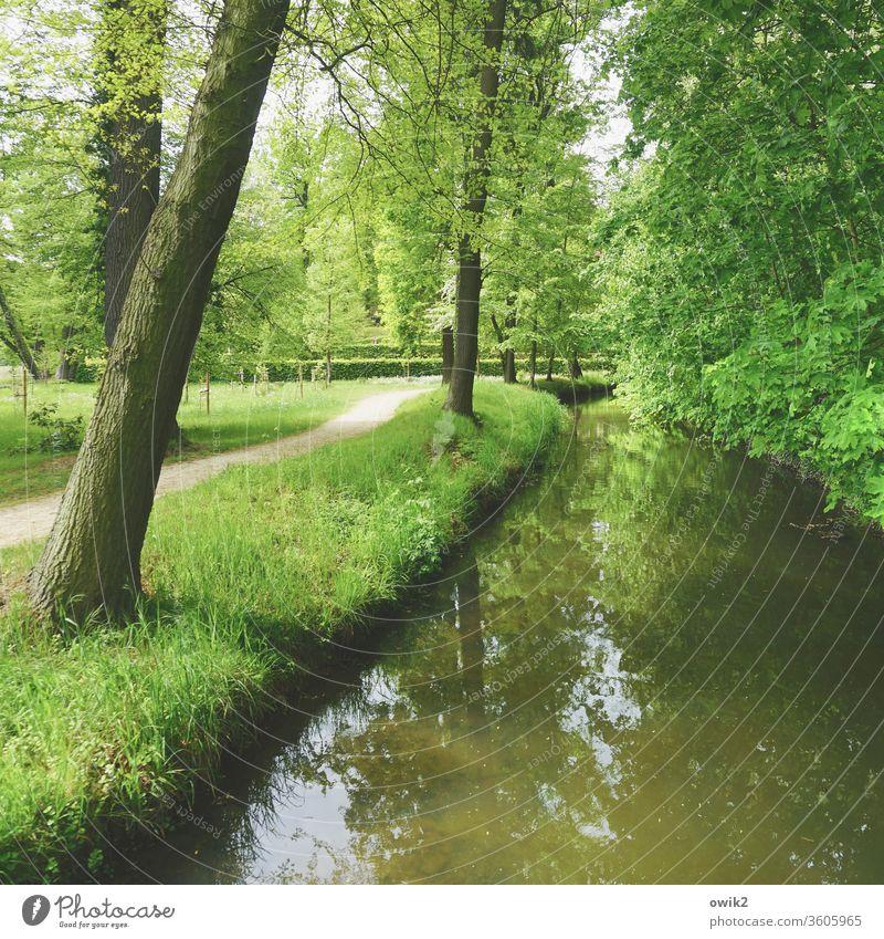 Es fließt Landschaft Kanal Wasserstraße Farbfoto Außenaufnahme fließend Gewässer Natur Menschenleer Fluss Tag Reflexion & Spiegelung Zentralperspektive
