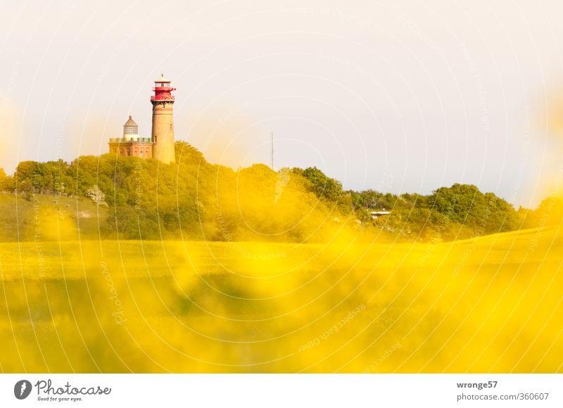 2 Türme gelb Architektur Deutschland Europa Turm Sicherheit Aussicht Bauwerk Backstein Schifffahrt Leuchtturm Sehenswürdigkeit Navigation Mecklenburg-Vorpommern