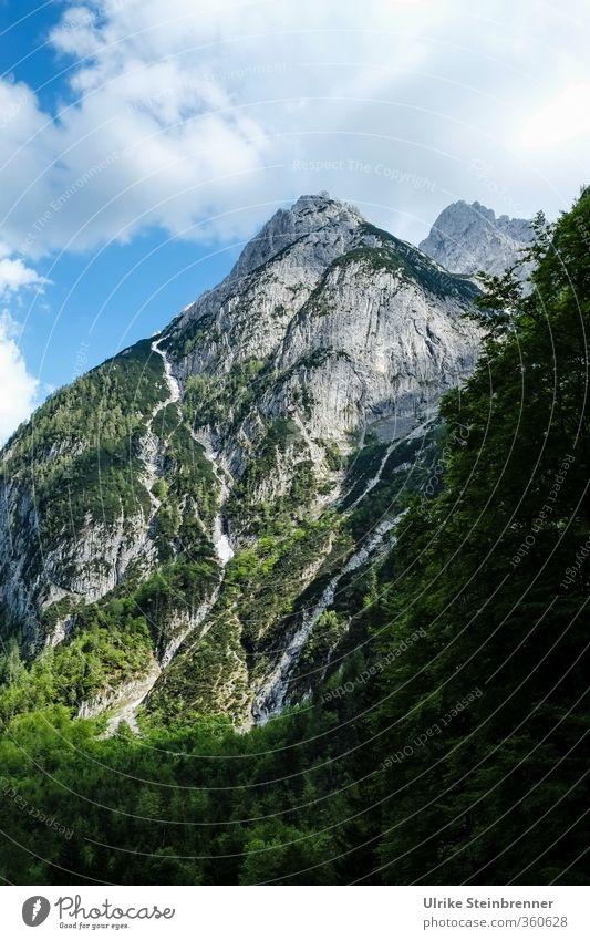 Am Wilden Kaiser 2 Ferien & Urlaub & Reisen Tourismus Ausflug Berge u. Gebirge wandern Umwelt Natur Landschaft Pflanze Himmel Wolken Sommer Schönes Wetter Baum