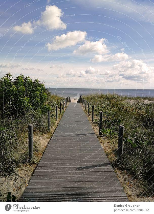 Holzsteg, der zum Strand an die Ostsee führt Küste MEER Laufsteg hölzern baltisch Düne Horizont Sand Wasser Küstenstreifen Wald Gras Golf Hügel jurmala Lettland