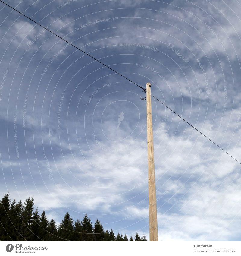 Holzmast und Stromleitung im Schwarzwald Himmel Strommast Außenaufnahme Menschenleer blau Bäume Fichten Schönes Wetter Kabel Elektrizität