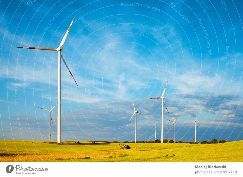 Windmühlenpark auf einem Getreidefeld. Turbine Natur Himmel Elektrizität Erzeuger Propeller Feld Ökologie Industrie ländlich Technik & Technologie grün Kraft