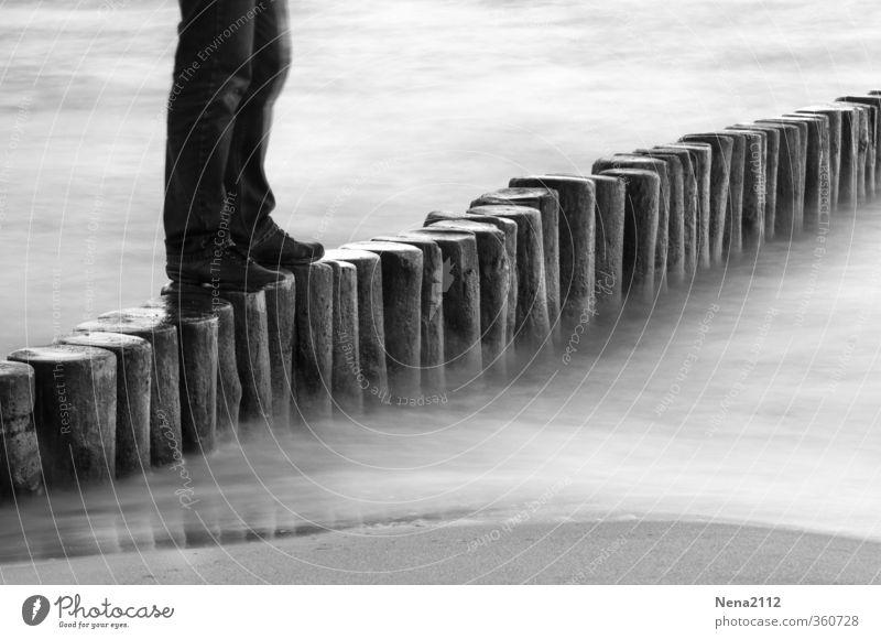 Der Wanderer Mensch Natur Wasser Meer Freude Umwelt Holz Sand Beine Fuß gehen maskulin Freizeit & Hobby laufen wandern Abenteuer