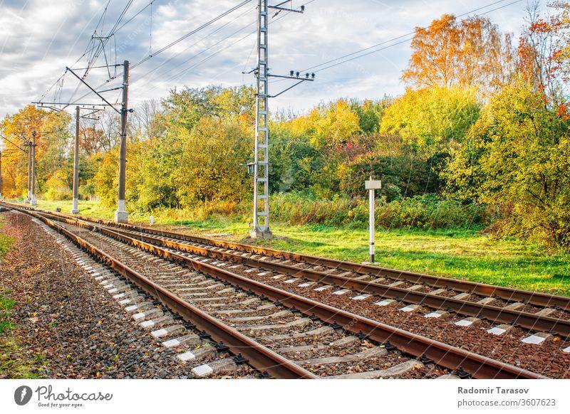 Eisenbahn im Herbstwald Natur Wald fallen Schiene Laubwerk Landschaft gelb Baum Saison Blätter Ständer natürlich orange Sonnenlicht schön im Freien Bäume grün
