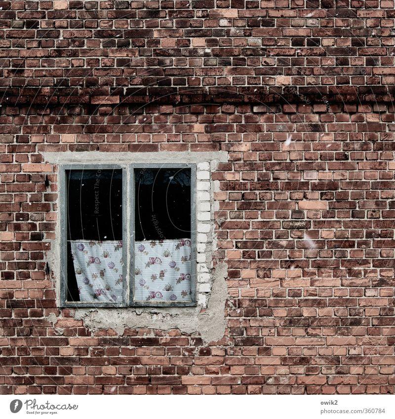 Fenster zum Hof alt Wand Mauer Fassade Design trist Vergänglichkeit kaputt Vergangenheit rein verfallen Verfall Backstein Fensterscheibe Gardine