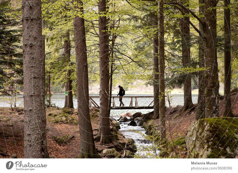 Dunkle Silhouette eines Mannes, der durch die Holzbrücke im Wald geht. Bergsee und Bach. Wandern im Wald. Wanderweg im Naturpark. Schwarzwald. Schwarzwald, Deutschland.