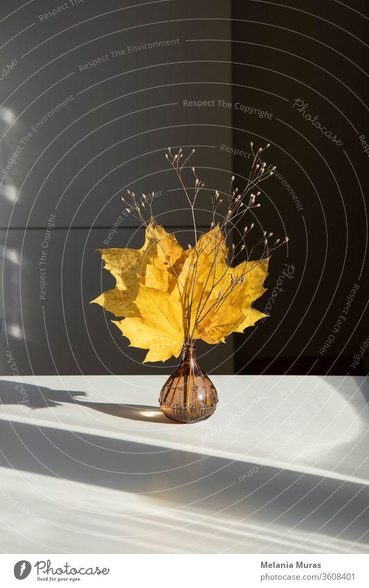 Schöner saisonaler trockener Strauß von herbstlich gelben Ahornblättern. Innendekoration. Herbstliche Innendekoration. Hausdekoration, einfaches, minimalistisches Trockenblumenarrangement.