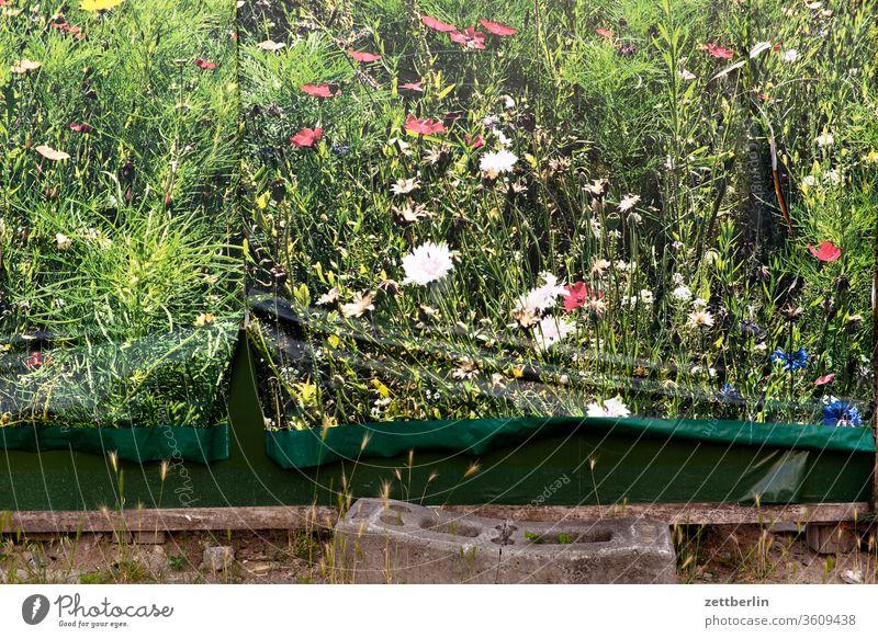 Plakat für Natur natur wiese landschaft poster plakat zitat plakatwand falte riss schaden beschädigung urban umwelt umweltschutz blume blühen bild-im-bild