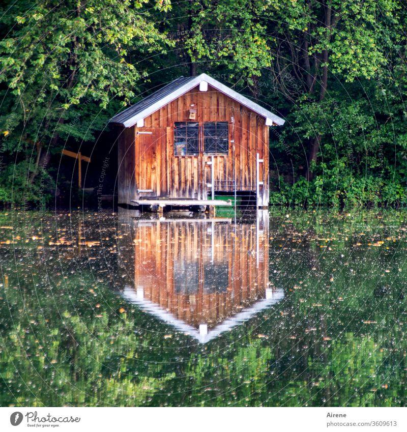 Symmetrie | für gleichbleibende Tage Hütte Bootshaus Teich See Seeufer Wald positiv Erholung ruhig Einsamkeit Holzhaus Reflexion & Spiegelung Spiegelbild