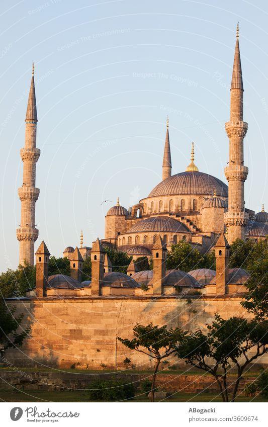Blaue Moschee (Sultan Ahmet Camii) bei Sonnenaufgang in Istanbul, Türkei Truthahn Wahrzeichen Islam Minarett Gebäude Architektur Sehenswürdigkeit Bauwerk