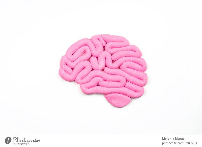 Modell eines rosa menschlichen Gehirns auf weißem Hintergrund. Profilansicht, Flachlegung. Konzept der Intelligenz. abstrakt Anatomie Künstliche Intelligenz