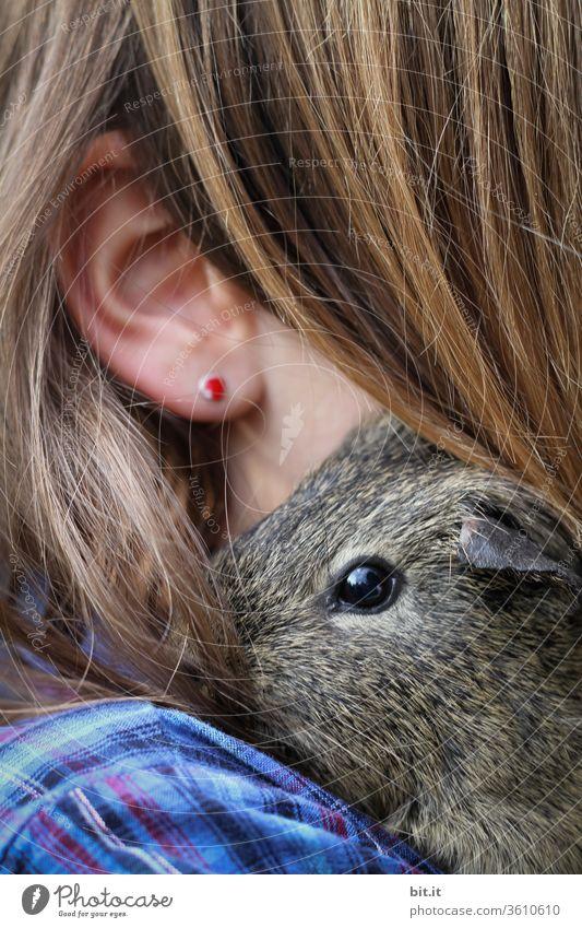 mausi's lieblingsmensch... Meerschweinchen Kind Kindheit Schulter Ohr Haare & Frisuren Haarsträhne haarig Ohrringe Kopf Gesicht Mensch Haut Mädchen weiblich