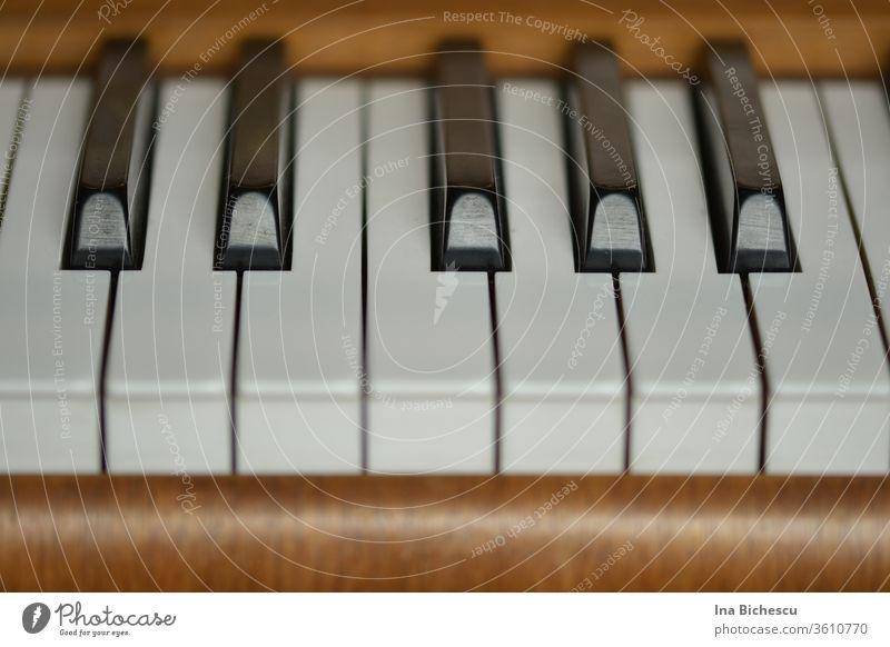 Sieben weiße und fünf schwarze Klavier Tasten umrandet von dem hell braunen Holz des Klaviers, fotografiert von der Spieler Seite. Schwarz weiß Musikinstrument