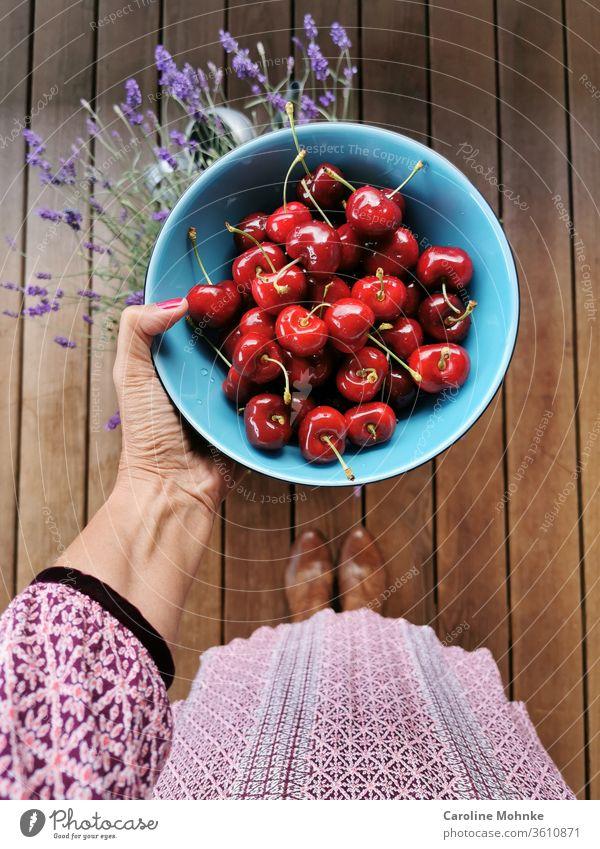 Frischgepflückte Kirschen bereit zum Verzehr Sommer Frucht lecker süß Lebensmittel frisch Gesundheit saftig rot reif organisch Natur Ernte grün Ackerbau Garten