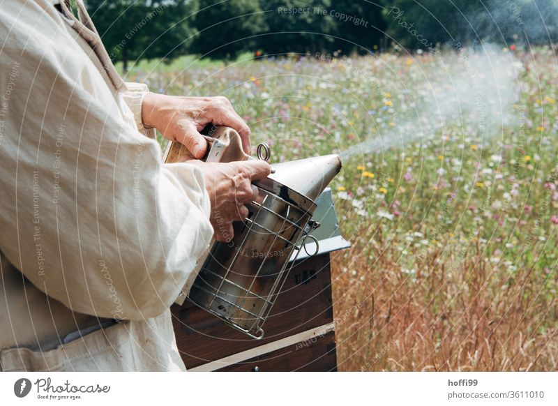 Imker bereitet einen Smoker vor Imkerei imkern Honig Honigproduktion ökologischer landbau Honigbiene Lebensmittel Gesundheit Sommer Bienenkorb Bienenstock Natur