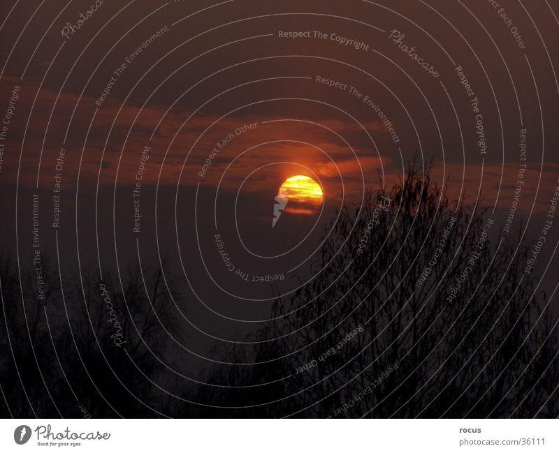 down_sun Sonne Abendsonne