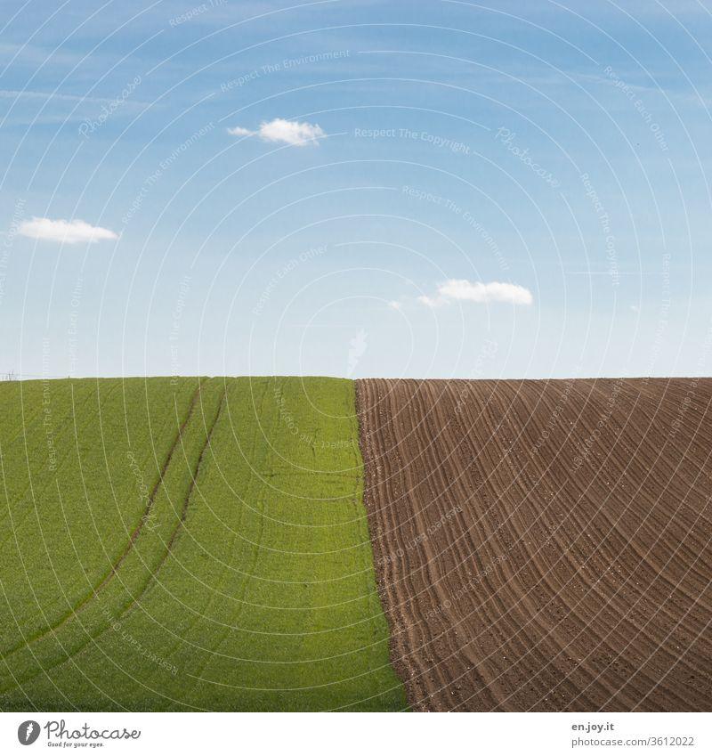 Feld und Acker am Hügel bis zum Horizont unter blauem Himmel Ackerbau Agrar Landwirtschaft Anbau Traktorspur Gepflügt Öko Erde grün gepflügt ländlich Umwelt