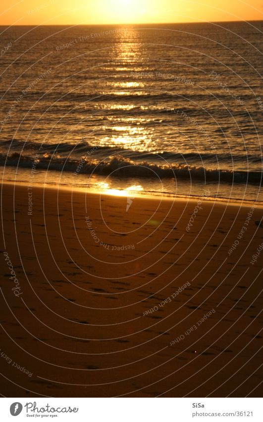 The sun rises Strand Sonnenaufgang Meer gelb Morgen