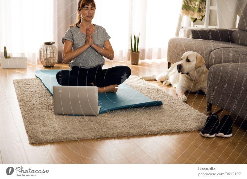 Mit meinem faulen Hund Übungen machen heimwärts Frau Yoga Fitness Meditation entspannend Haustier Training online Gesundheit Mädchen Yogi meditieren Atem Laptop