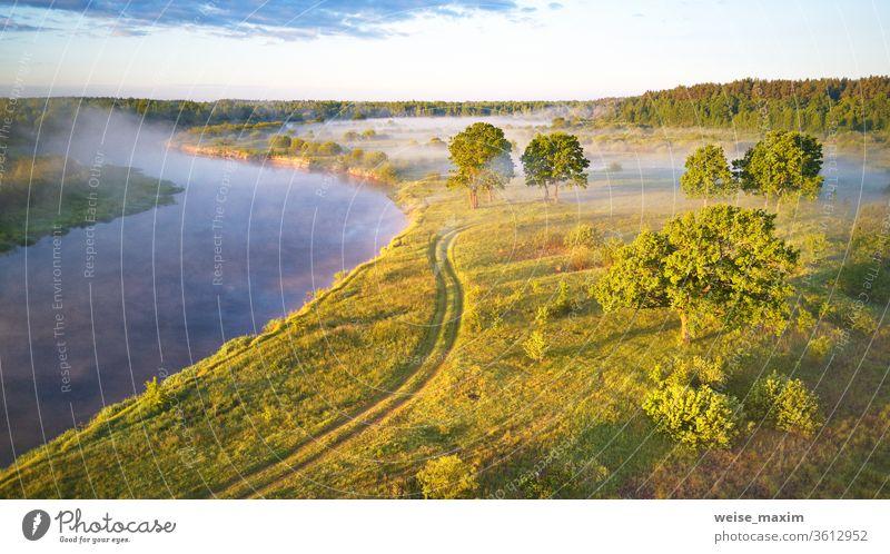 Sonnenlicht auf großen Eichenhainen am Morgen. Luftaufnahme Nebel Baum Sommer Landschaft Sonnenaufgang Morgendämmerung Antenne Natur grün Wiese Fluss Flussufer