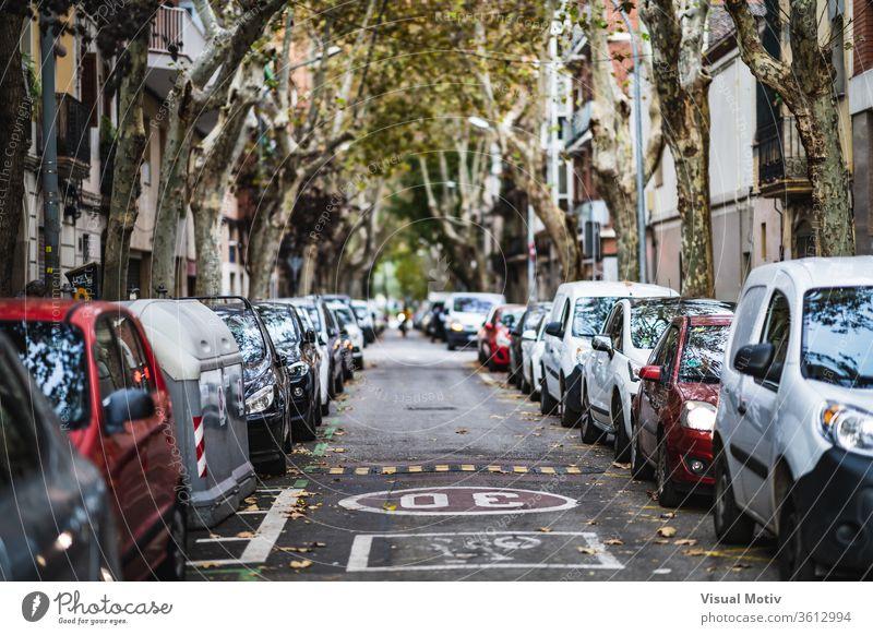 Frontansicht einer Stadtstraße mit auf beiden Seiten geparkten Autos PKW Straße Baum Gebäude modern Großstadt Revier Fahrzeug Architektur urban Verkehr