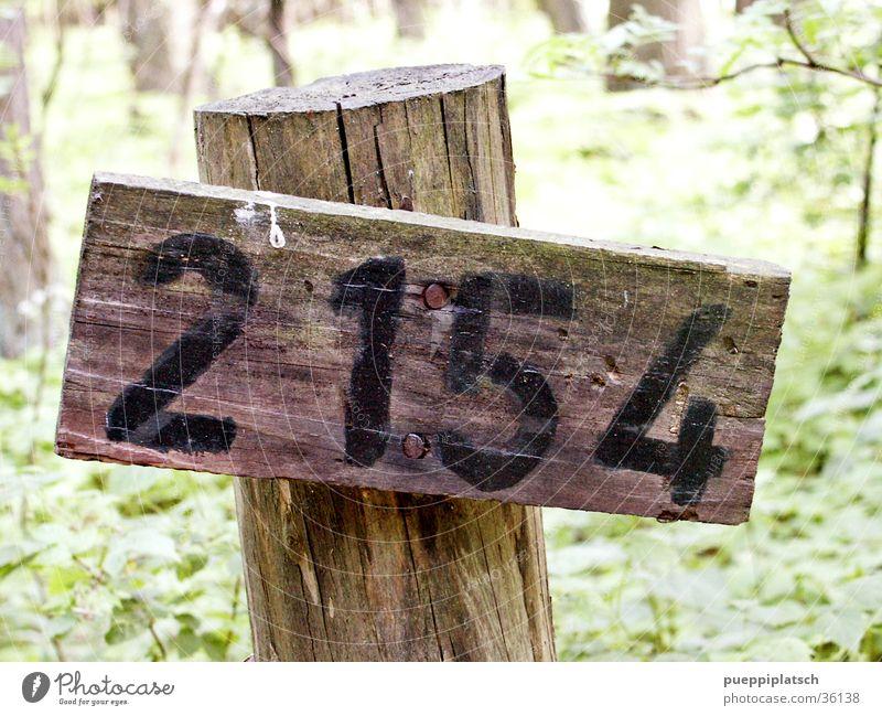 irgendeine Nummer im Wald Baum grün Wald Holz Ziffern & Zahlen Holzbrett Nagel Vogeldreck