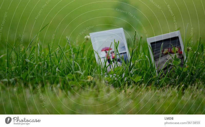 Polaroid im Grünen Duo Gras Wiese instax mini pink grün Lebensfreude Natur Freundinnen Schirm Tiefenunschärfe Picknick Sonnenbrille Ausflug Sommer Jugendliche