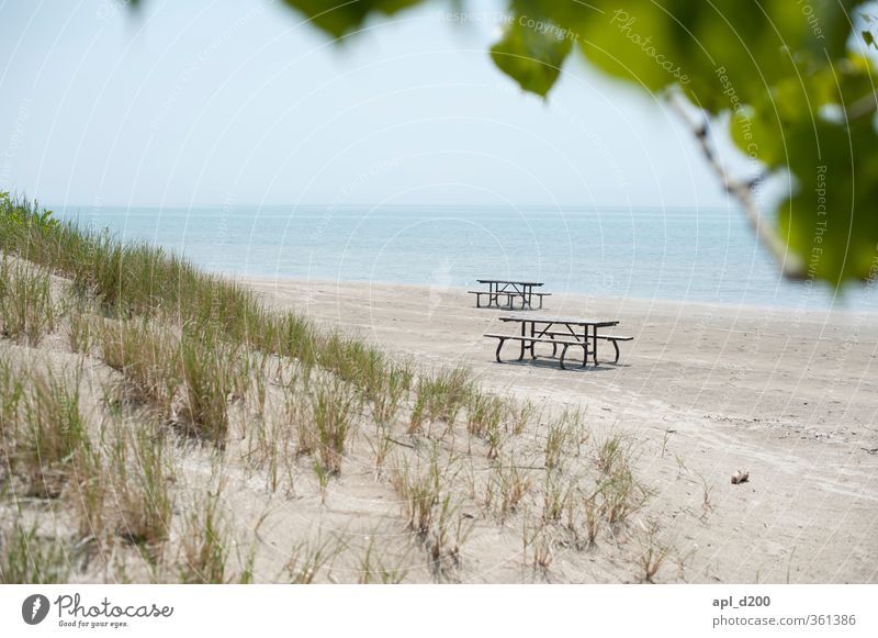 Bankenviertel Freizeit & Hobby Ferien & Urlaub & Reisen Tourismus Ausflug Sommerurlaub Strand Umwelt Natur Landschaft Pflanze Sand Himmel Baum Gras Sträucher