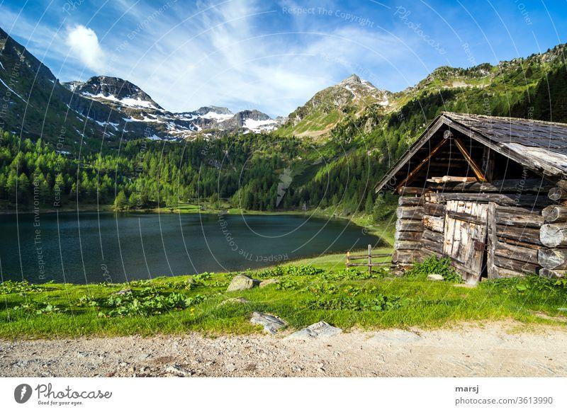 Alte Hütte am Duisitzkarsee Gebirgssee See Alpen Natur Tourismus Ferien & Urlaub & Reisen Berge u. Gebirge wandern ruhig Ausflug Alm einzigartig Berghütte