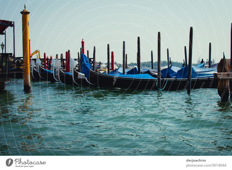 Feierabend auf dem Canal de Grande.Die Gondeln plätschern im blauen ruhigen Wasser. Außenaufnahme Farbfoto Natur Menschenleer Tag Venedig Tourismus