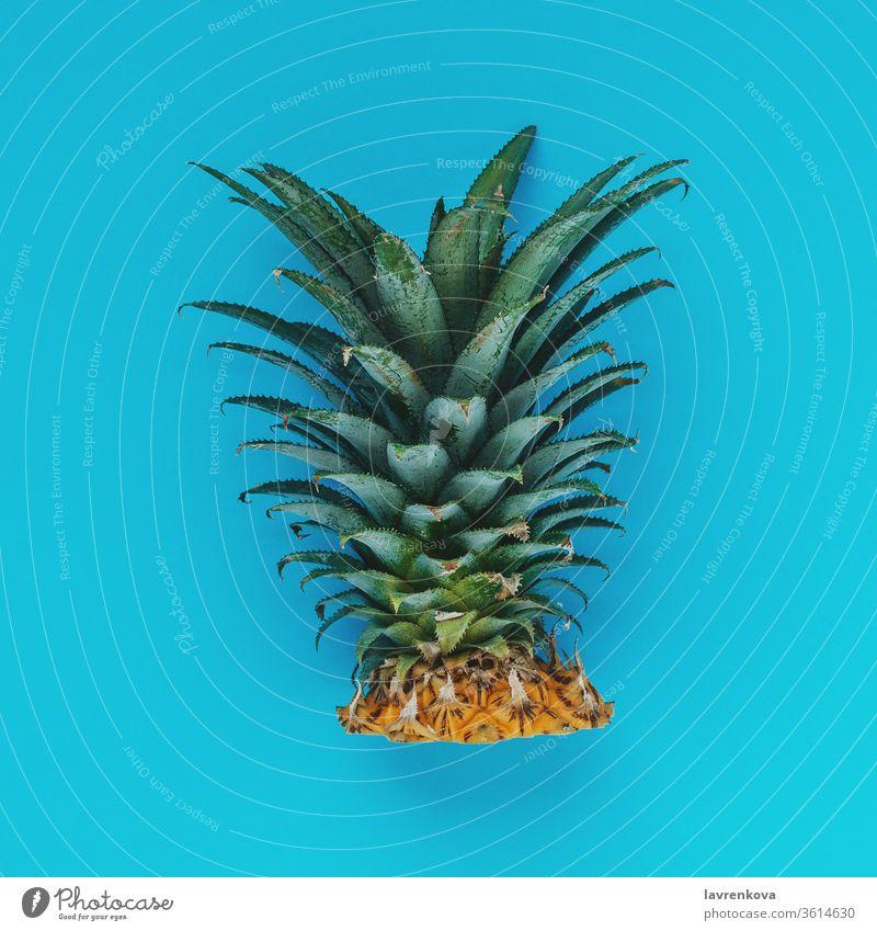 Flatlay von abgeschnittenen Ananasblättern auf cyanfarbenem Hintergrund, quadratisches Bild Frucht tropisch Quadrat Speiserest zyan Pflanze organisch Natur