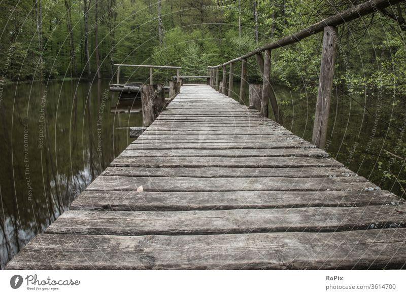 Steg an einem Fischteich im Wald. Pier Bootsanleger Mole See Gewässer Wasser Himmel Wetter Licht Biotop Stimmung Stille Ruhe Tal Natur Park Landschaft landscape