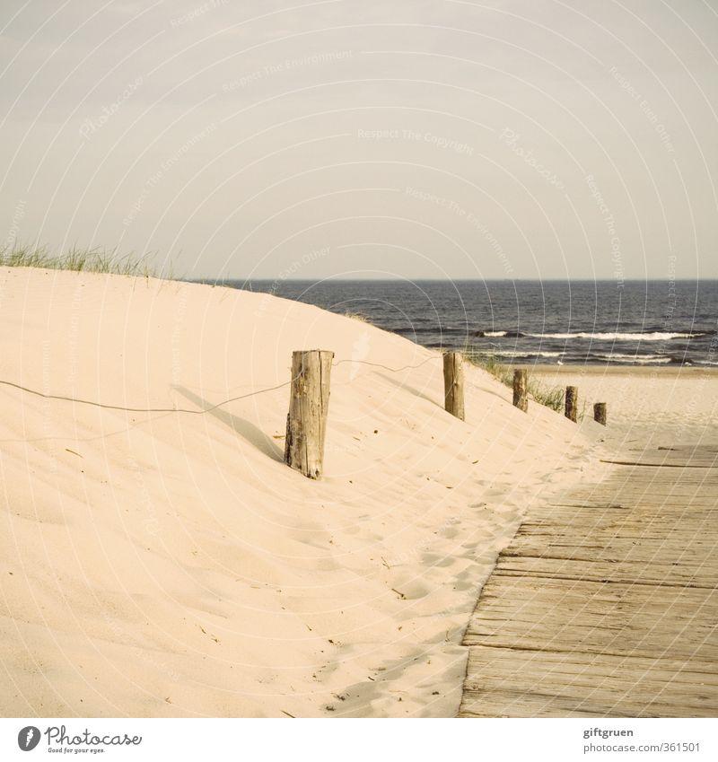 beste aussichten Umwelt Natur Landschaft Urelemente Sand Wasser Himmel Horizont Schönes Wetter Pflanze Gras Wellen Küste Strand Ostsee Meer Schwimmen & Baden