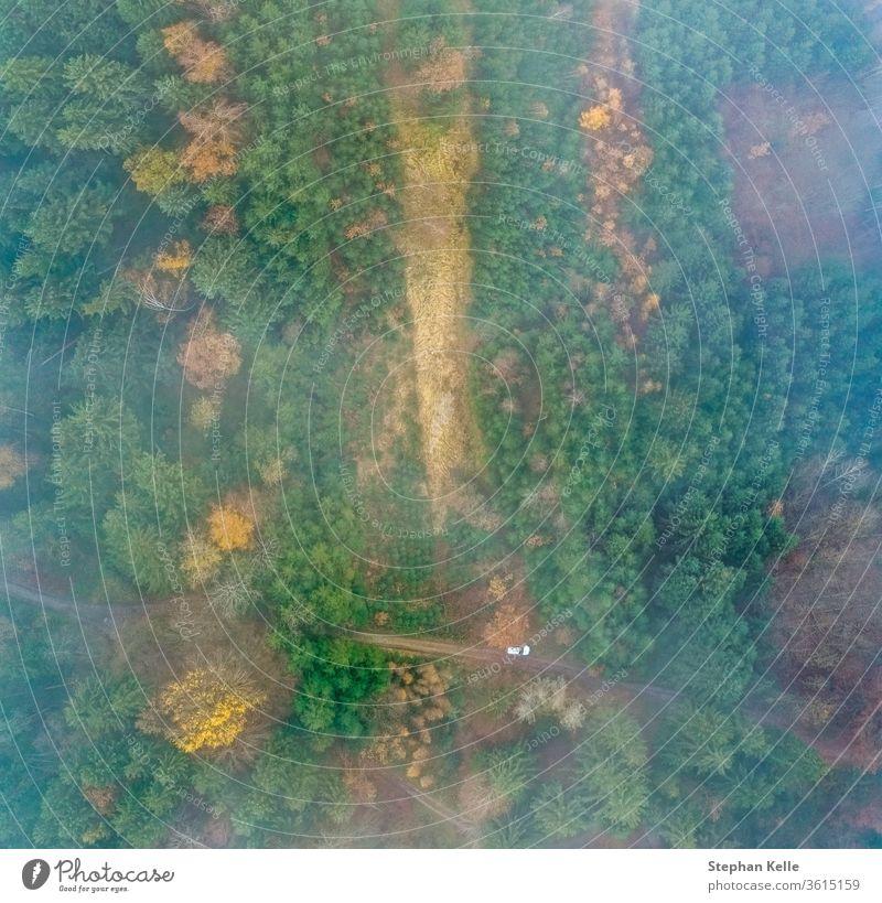 Draufsicht auf einen nebligen Wald mit einem weißen parkenden Auto an einer Landstraße. Dröhnen grün Natur Antenne Landschaft Baum Rauch natürlich strömen Nebel