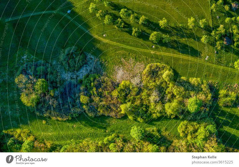 Drohne schoss auf einen grünen Feldweg durch Graswiesen, wo man einen gesunden Spaziergang an der frischen Luft genießen kann. Dröhnen Baum Natur Landschaft