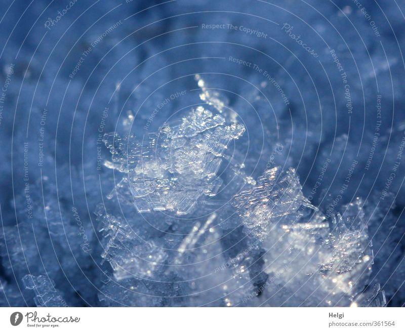 kleine Erfrischung... Natur blau schön weiß Winter kalt Schnee klein natürlich außergewöhnlich Eis glänzend Ordnung ästhetisch Coolness Vergänglichkeit