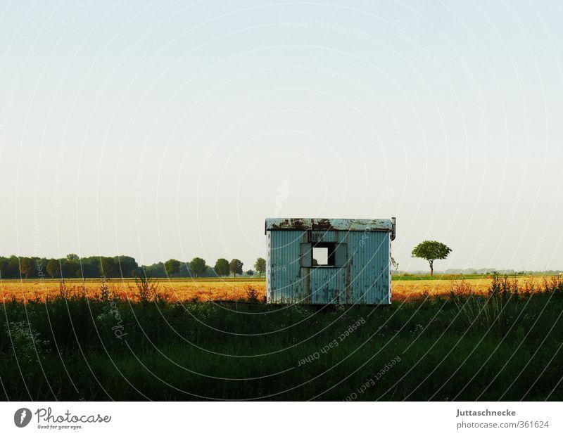 Vergessen blau alt Sommer Einsamkeit Landschaft schwarz Ferne gelb Fenster klein Horizont Feld Baustelle Sehnsucht Hütte Rost