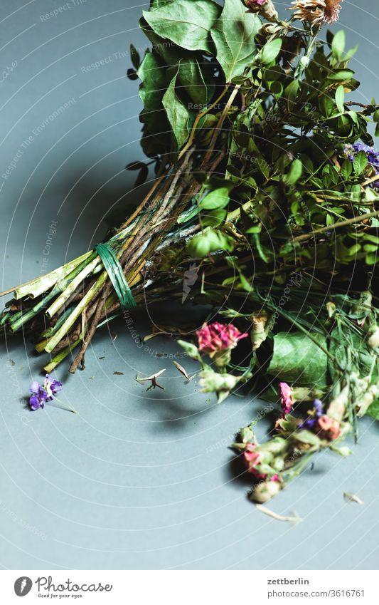 Vertrockneter Blumenstrauß alt blume blumenstrauss blüte farblos geburtstag staubig trocken verblüht vergangen vergangenheit verstaubt vertrocknet verwelkt
