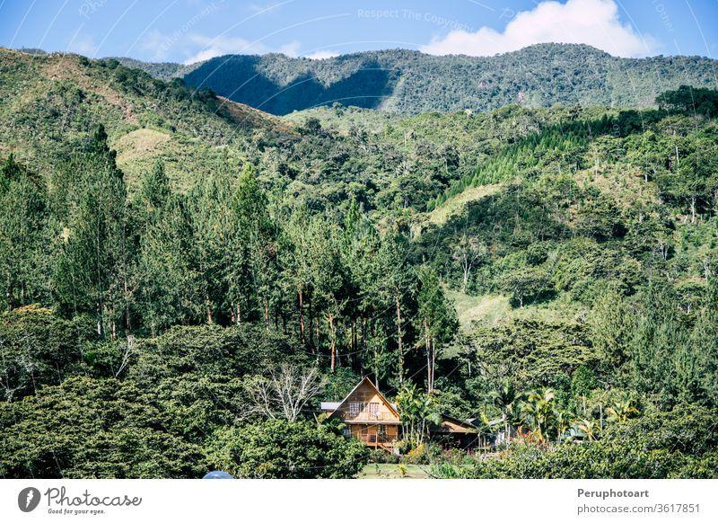 Häuser in Oxapampa im peruanischen Dschungel Abenteuer Amazonas amerika Anden Hintergrund schön Schönheit blau Farbe farbenfroh Deutschland grün historisch Haus