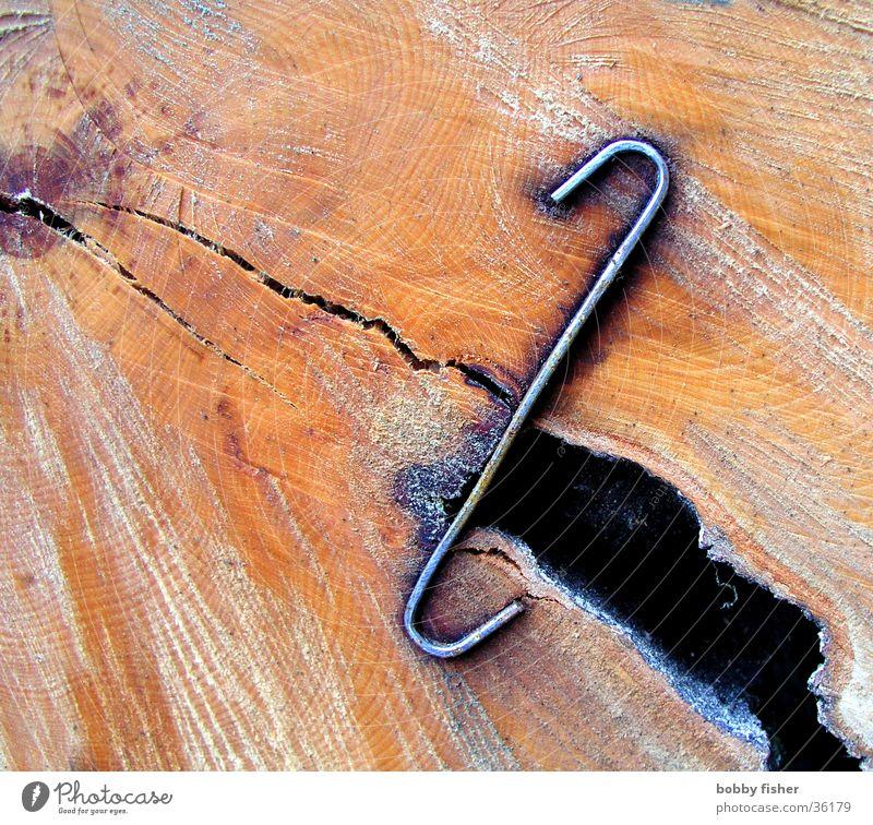 zusammenhalt Baum Holz orange Buchstaben Riss Eisen Haarschnitt